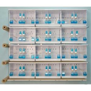 Batterie d 39 levage 12 cages pour oiseaux exotiques et canaris for Cage a oiseaux decorative pas cher