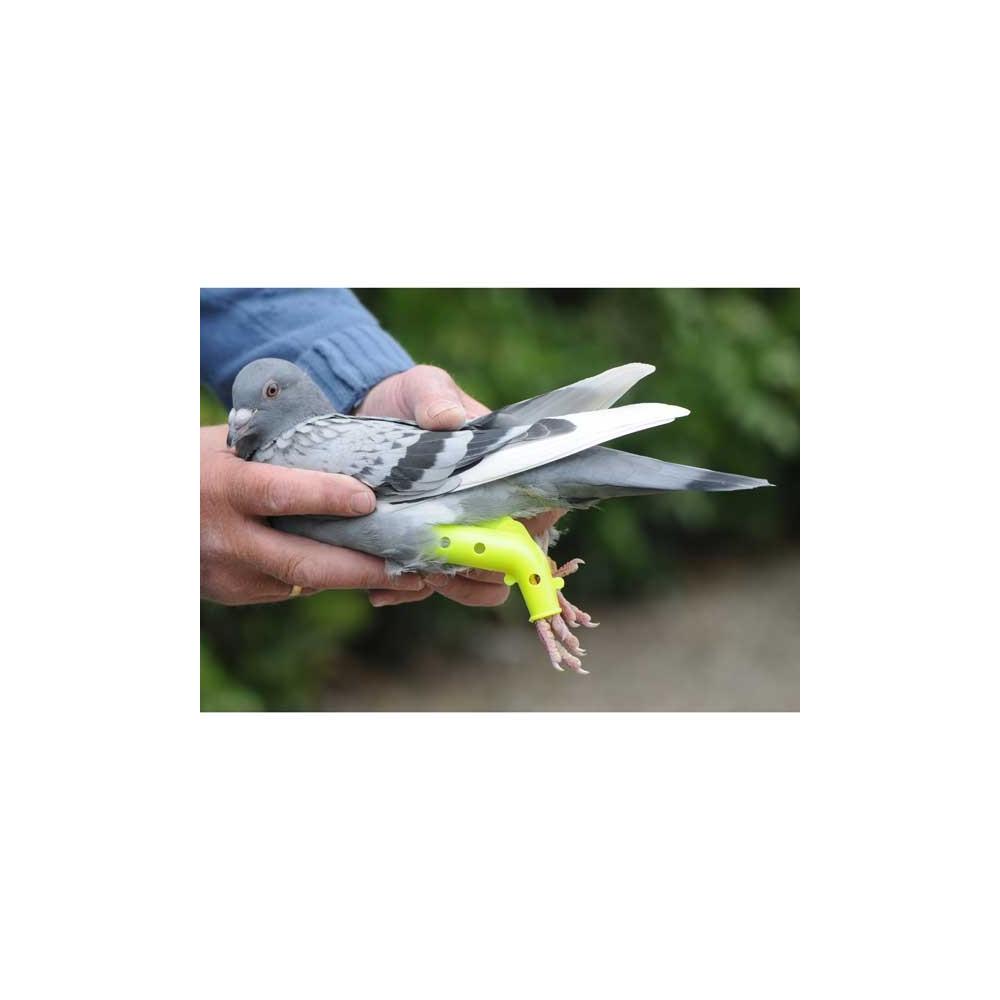 colomboclip pigeon proth se pour fractures. Black Bedroom Furniture Sets. Home Design Ideas