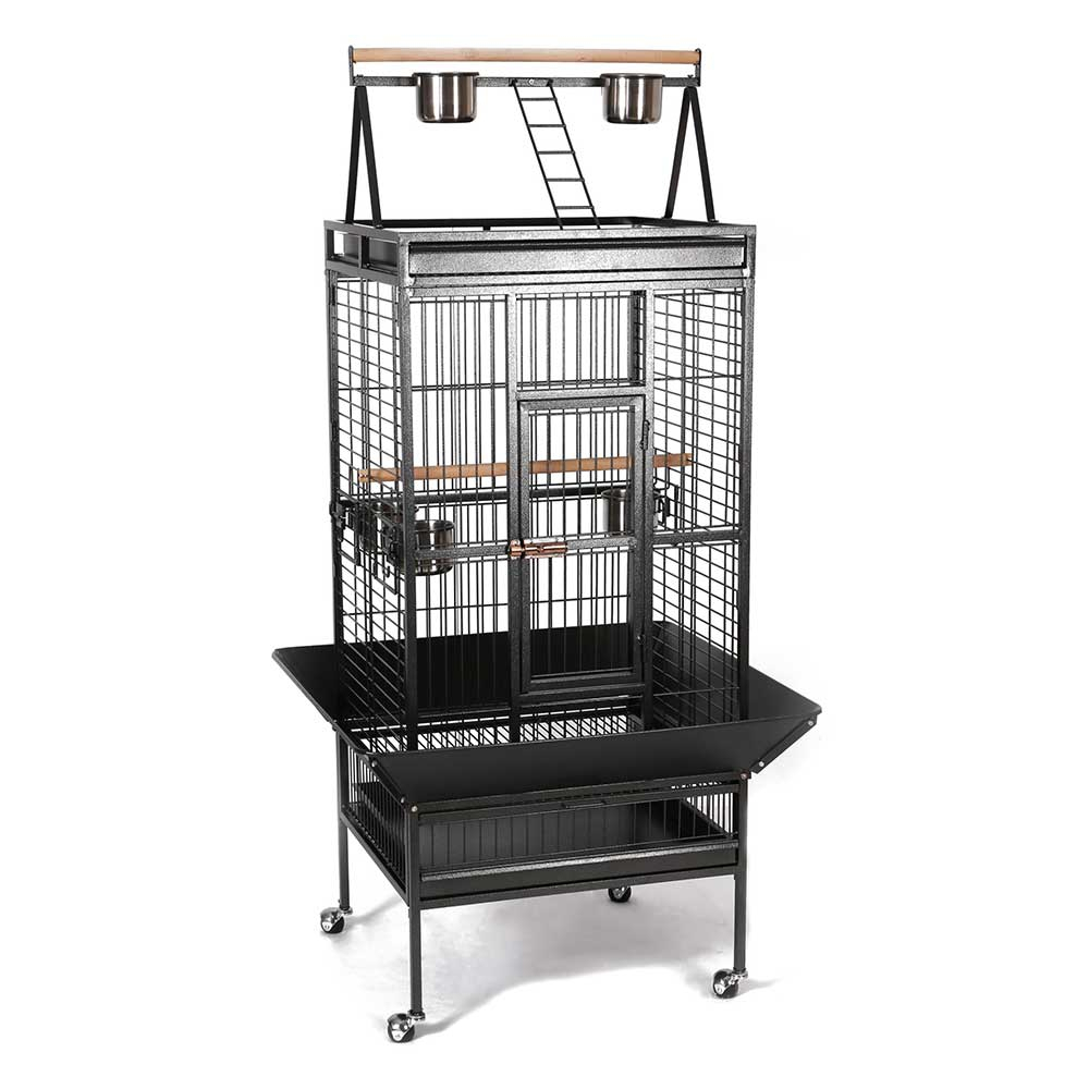 cage pour perroquet gris du gabon amazone cacatoes youyou. Black Bedroom Furniture Sets. Home Design Ideas
