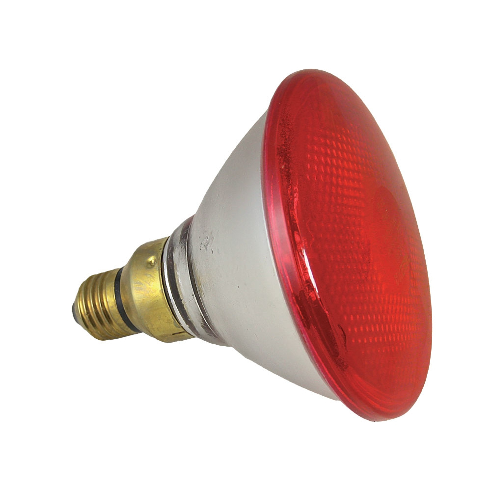 Lampe infrarouge lampe chauffante pour oiseaux volailles - Lampe chauffante infrarouge ...