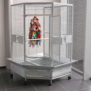 cages perroquets palace pour gris du gabon amazone. Black Bedroom Furniture Sets. Home Design Ideas