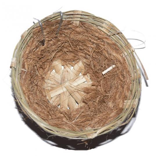 Nid en osier et coco