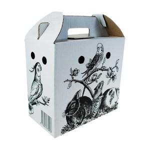 Boîtes en carton pour perruches