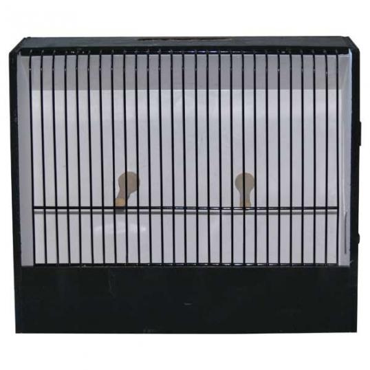 Cage d'exposition oiseaux exotiques