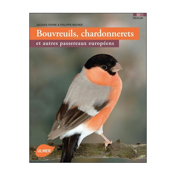 Bouvreuils chardonnerets et autres petits oiseaux européens