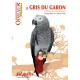 Le Gris du Gabon