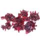 Fleur d'Hibiscus confite