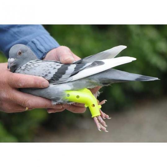 Colomboclip pigeon prothèse pour fractures
