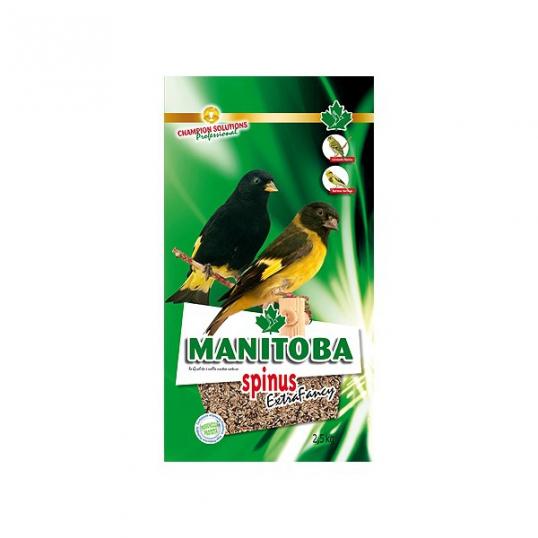 Manitoba Spinus Extra Fancy