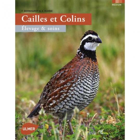 Cailles et colins : Elevage & soins