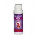 Vega - Acides Aminés