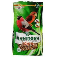 Manitoba indigènes