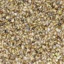 Graines de Chanvre Manitoba