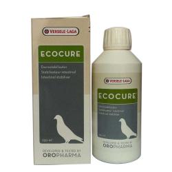 Ecocure : Flore intestinale