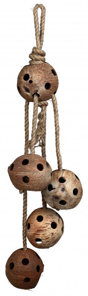 Noix de coco sur corde de jute