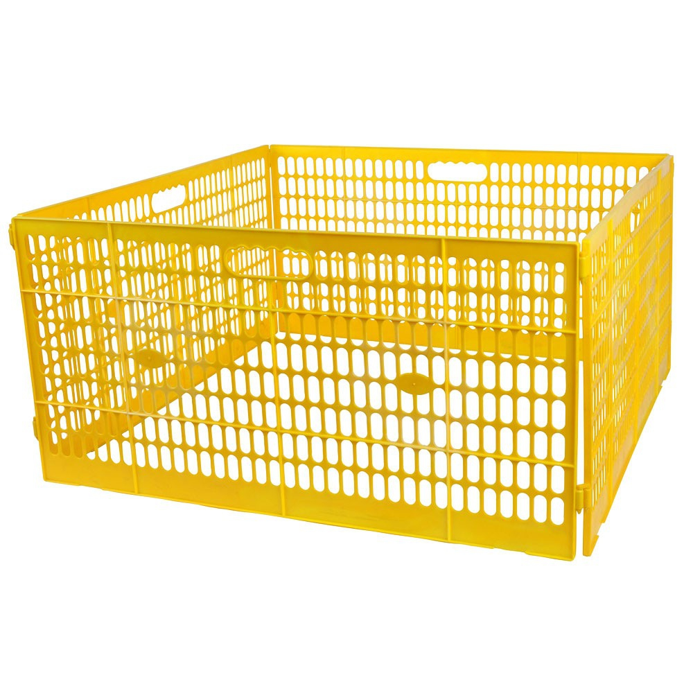 Enclos pour poussins et poules