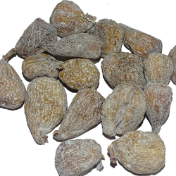 Figues séchées rondes