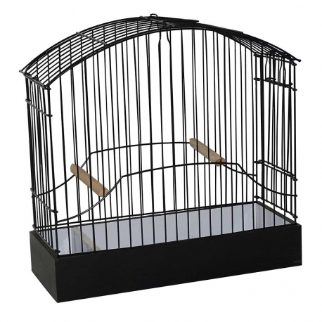 Cage d'expostition border