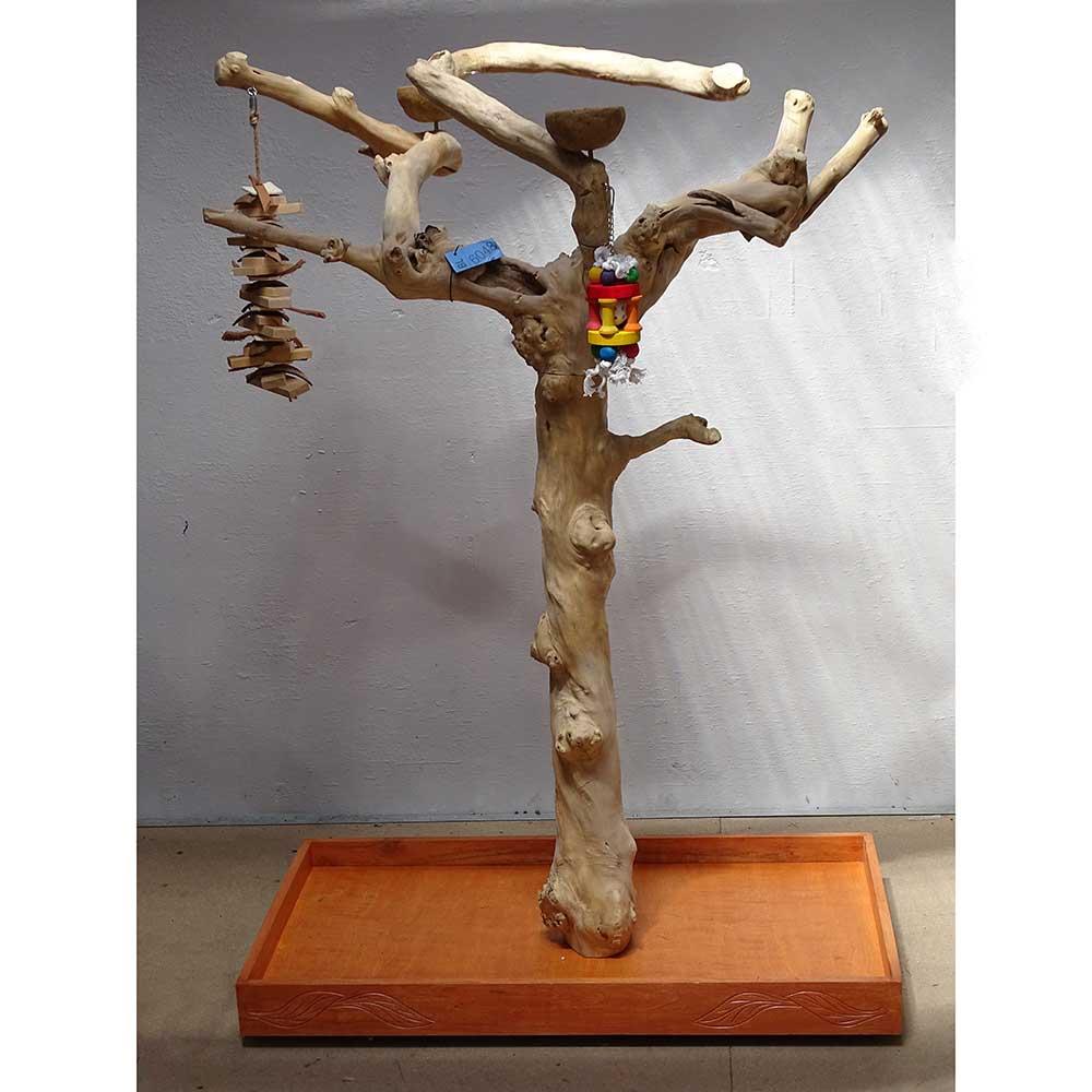 Abre en bois de Java