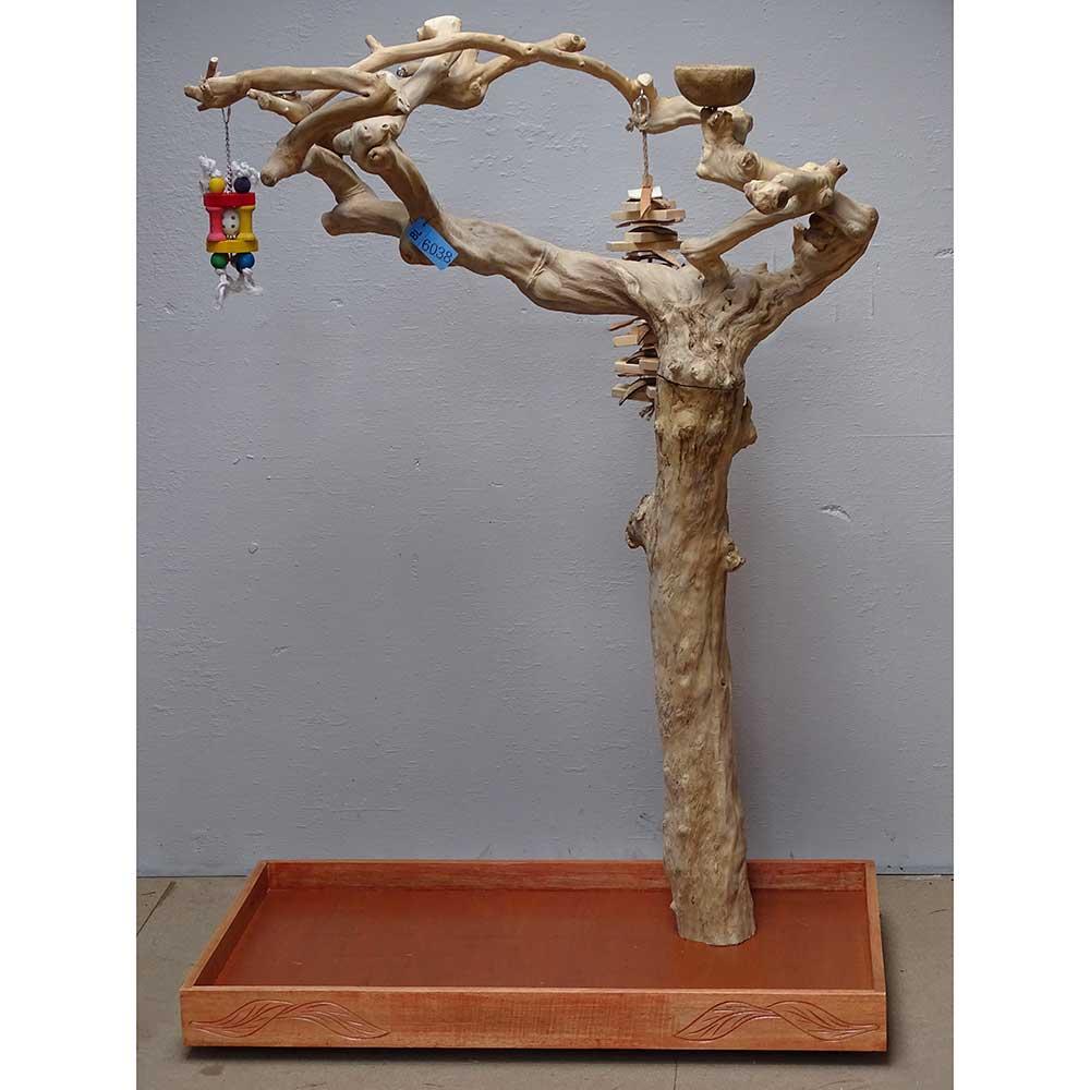 Arbre en bois de Java