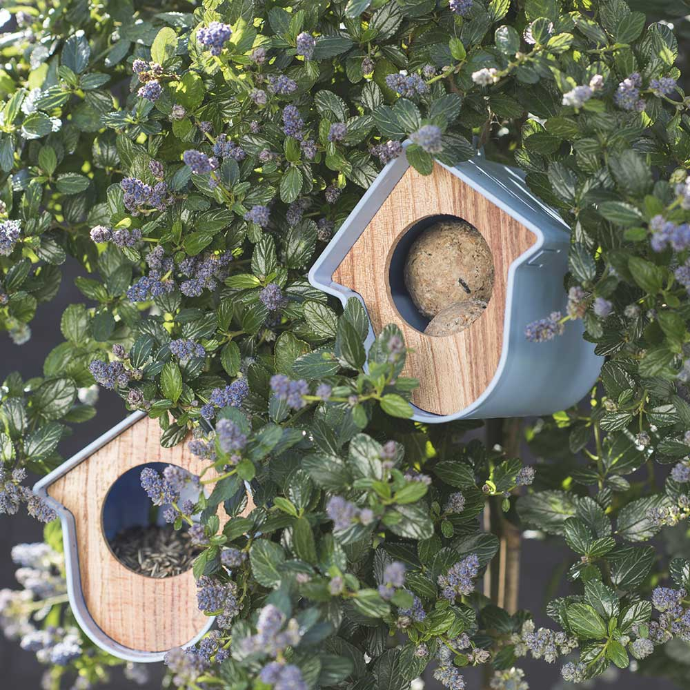 evie mangeoire oiseaux de la nature qualitybird