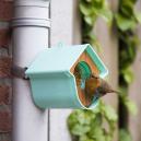 Evie mangeoire oiseaux de la nature