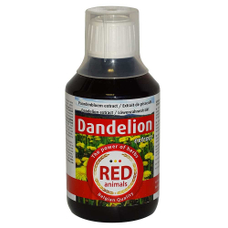 Extrait de pissenlit - Dandelion extract