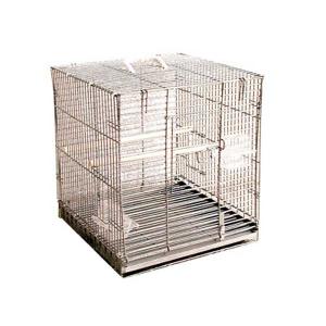 Cage de transport pliable pour perroquet