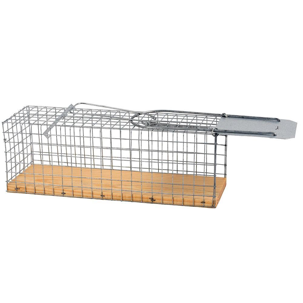 Piège à rat grillagé base en bois