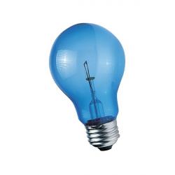 Ampoule Bleue lumière du jour