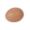 Oeufs de poules brun en plastique