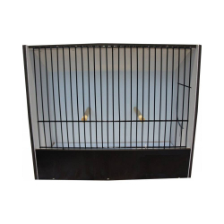 Cage d'exposition oiseaux indigènes en PVC