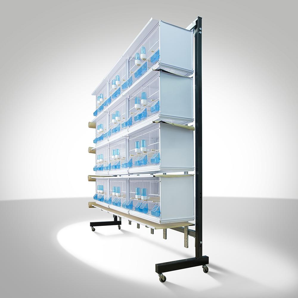 Système Canariz cages New 12 roulettes sur papier Batterie hdtCQrs