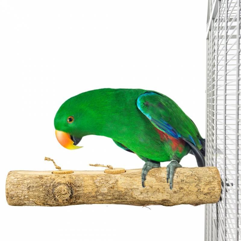 Perchoir Fruity pots Foraging - Back Zoo Nature