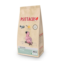 Psittacus Bouillie Neonatale