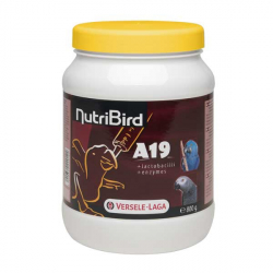 NutriBird A19 - 0,8 kg