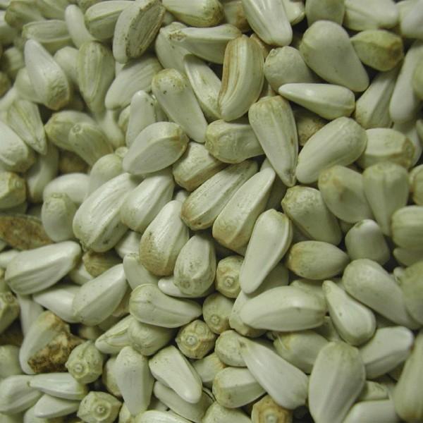Cardy ou graines de carthame - 1 kg