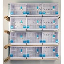 Batterie d'élevage 12 cages 45x30x36 - Avec tiroirs