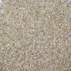Millet Japonais - 1 kg