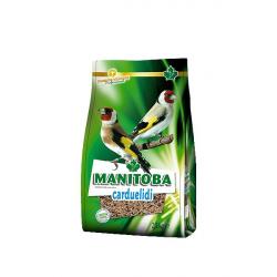 Manitoba Carduelidi Chardonneret - 0,8 kg