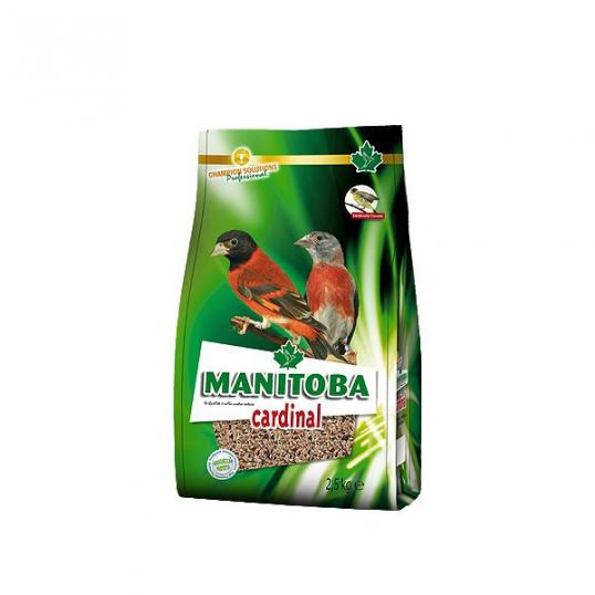 Manitoba Cadinal Tarin (2035)