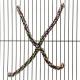 Perchoir Araignée (3229),Perchoir Araignée (3230),Perchoir Araignée (3231)