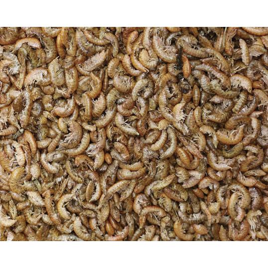 Gammarus crevettes séchées (3394)