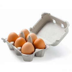 Boite à oeufs en carton - 6 œufs