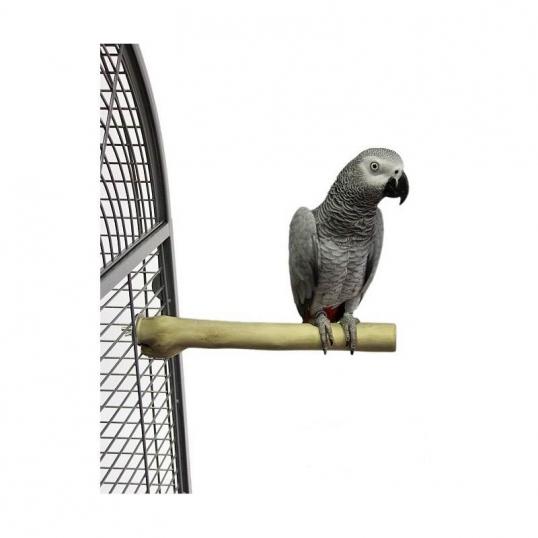 Back Zoo Single Java Perch' Medium