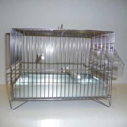 Cage de chant galvanisée avec grille de fond