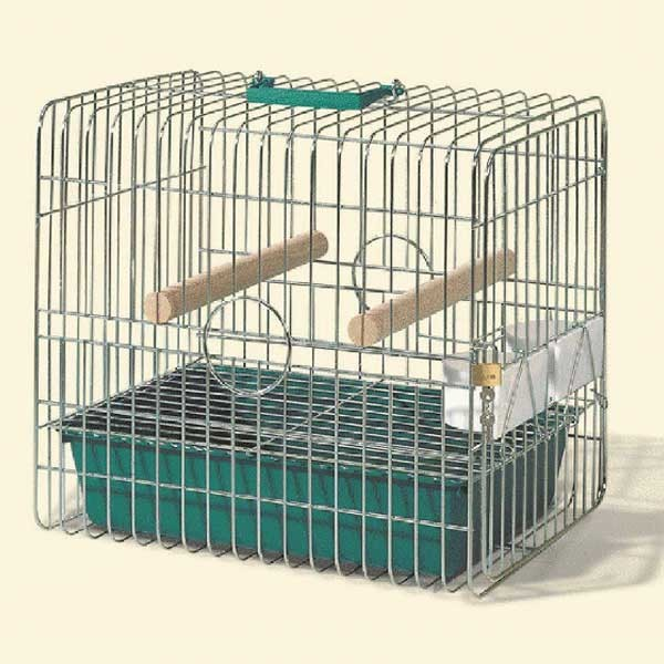 Cage transport perroquet