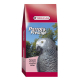 Graines à germer perroquets