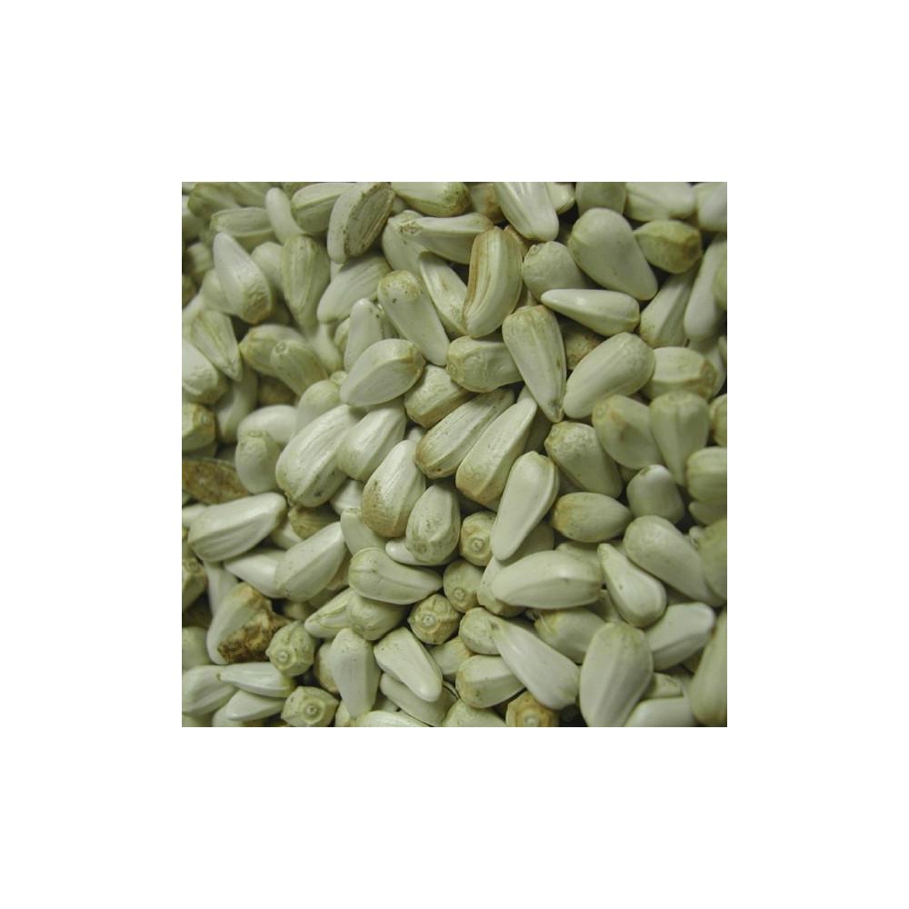 Graine de cardi ou graine de carthame en vrac - Graines de tournesol pour oiseaux ...