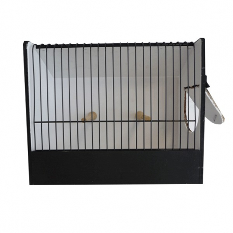 Cage d'exposition canari gloster